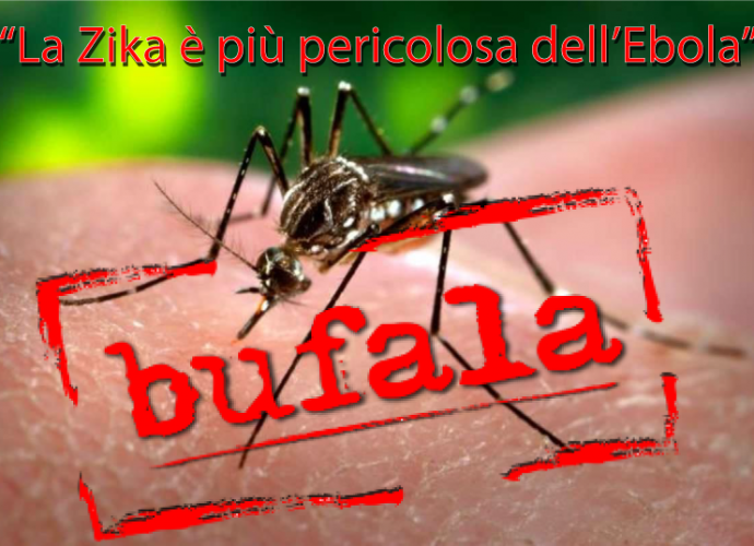 zika pericolo ebola bufala